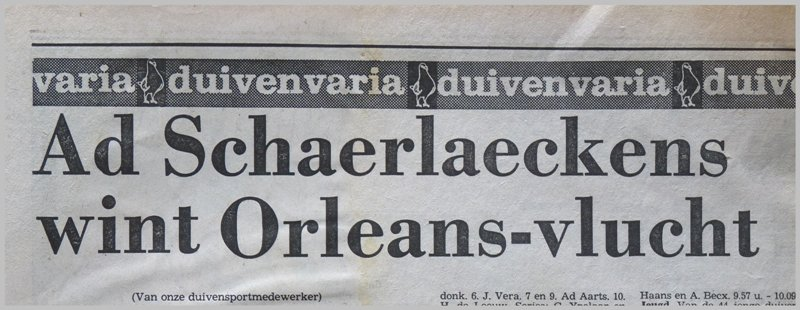 Ad Schaerlaeckens wins the race from Orleans.