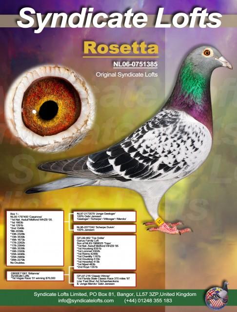 'Rosetta' granddam of 44th & 46th International SAMDPR 2016...