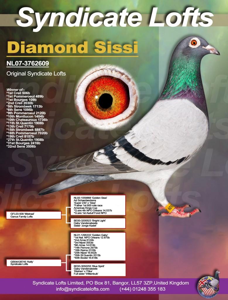 Diamond Sissi