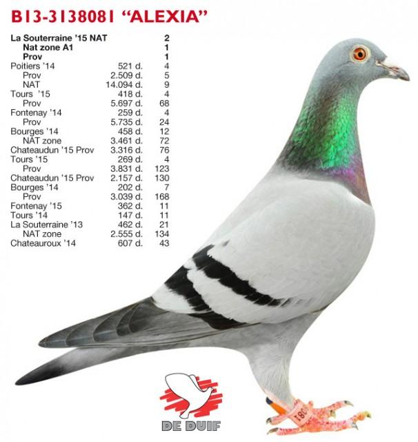 Sioen-Luc-Hilde_B13-3138081_Alexia