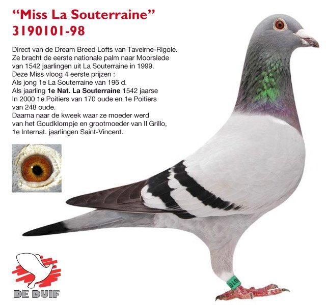 Sioen-Luc-Hilde_B98-3190101_MissLaSouterraine