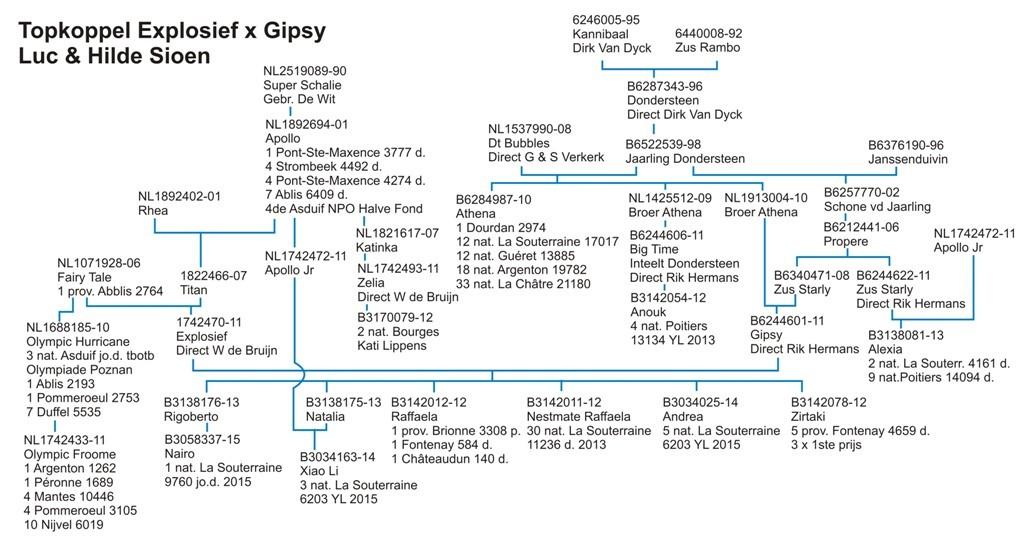 schema-Explosief-Gipsy